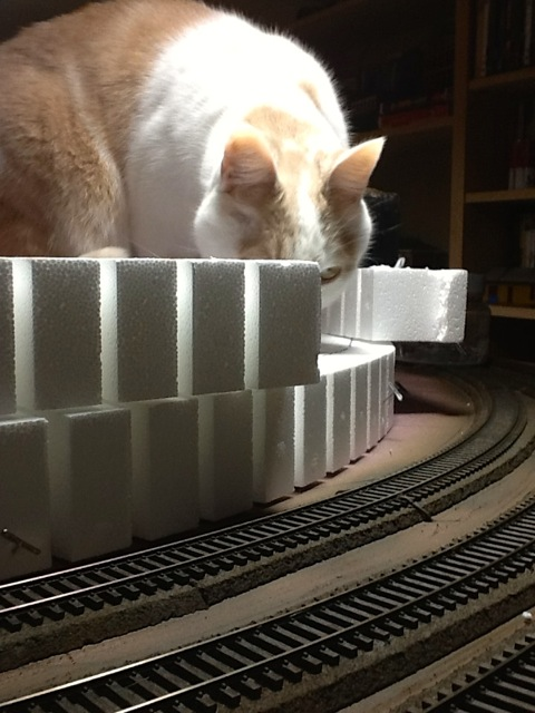 Catzilla inspects the track work on section 3 (lower level).